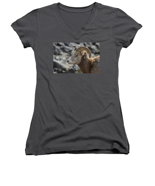 Women's V-Neck featuring the photograph Close Big Horn Sheep  by Roxy Hurtubise
