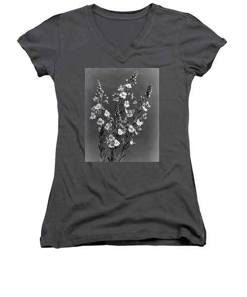 Close Up Of Gentian Speedwell Flowers Women's V-Neck