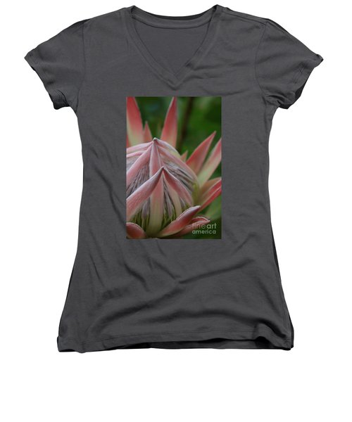 Cloths Of Heaven  Women's V-Neck T-Shirt