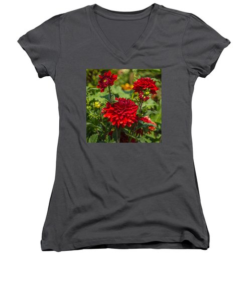 Cluster Of Dahlias Women's V-Neck T-Shirt