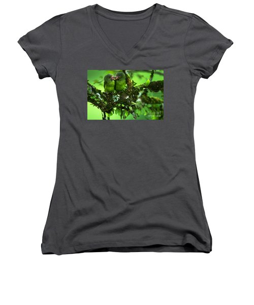 Cobalt-winged Parakeets Women's V-Neck T-Shirt (Junior Cut) by Art Wolfe