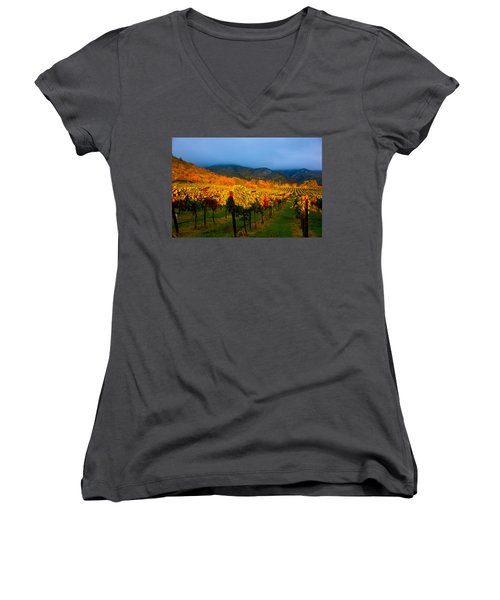 Colibri Morning Women's V-Neck T-Shirt