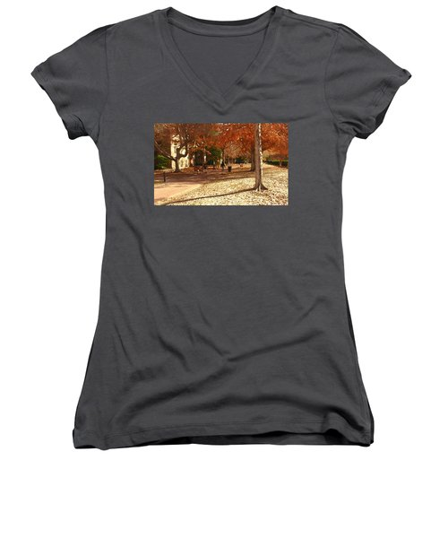 College Of William And  Mary Abstract Women's V-Neck T-Shirt