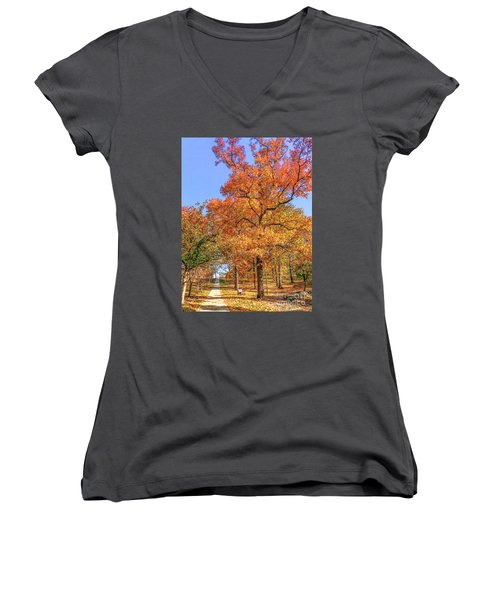Colors Of Fall Women's V-Neck T-Shirt