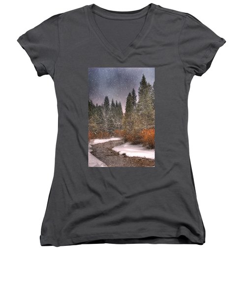 Colours Of Winter Women's V-Neck T-Shirt (Junior Cut) by Juli Scalzi