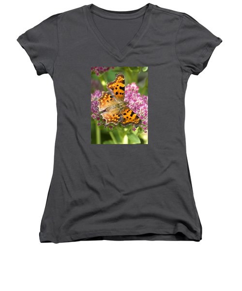 Comma Butterfly Women's V-Neck T-Shirt (Junior Cut) by Richard Thomas