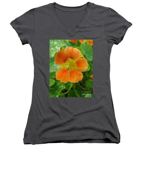 Common Nasturtium Women's V-Neck T-Shirt (Junior Cut)