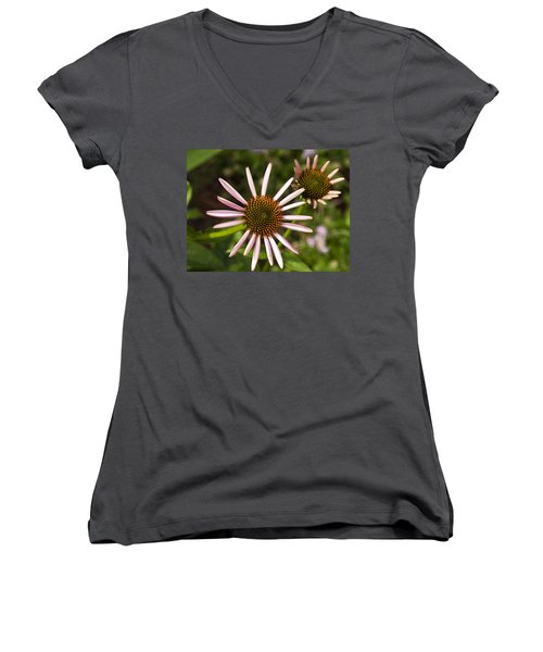Cone Flower - 1 Women's V-Neck