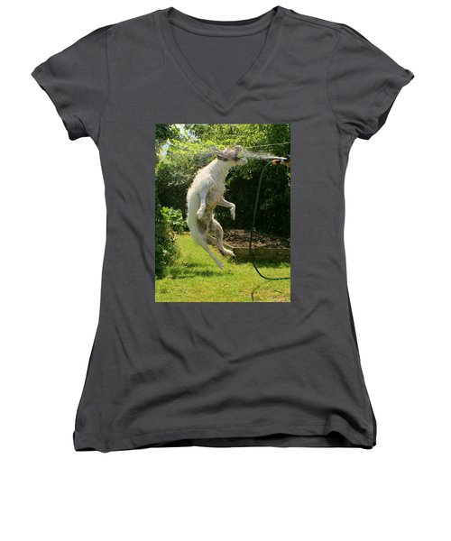 Cool Dog Women's V-Neck T-Shirt