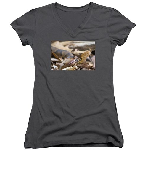 Copperhead In The Wild Women's V-Neck T-Shirt (Junior Cut) by Betsy Knapp