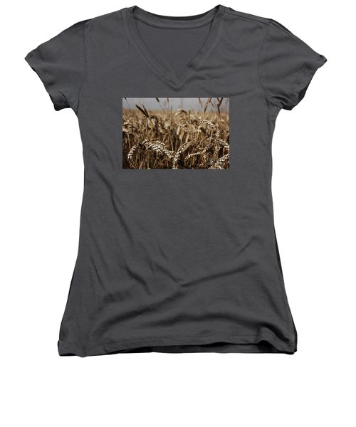 Women's V-Neck T-Shirt (Junior Cut) featuring the photograph Corn Field by Vicki Spindler