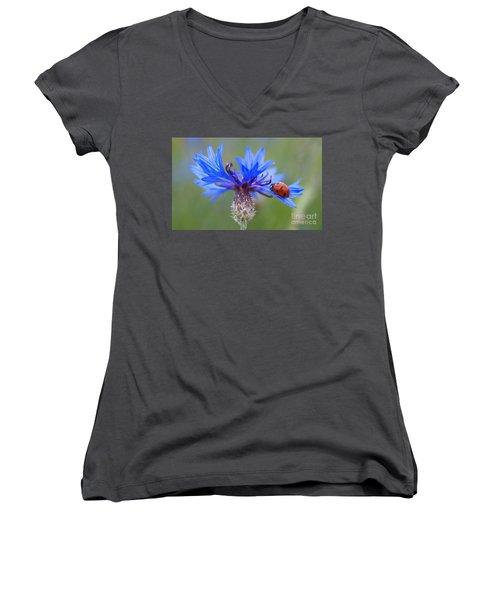 Women's V-Neck T-Shirt (Junior Cut) featuring the photograph Cornflower Ladybug Siebenpunkt Blue Red Flower by Paul Fearn