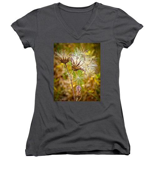 Women's V-Neck T-Shirt (Junior Cut) featuring the photograph Cotten Grass by Jim Thompson