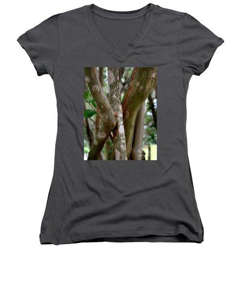 Crape Myrtle Branches Women's V-Neck T-Shirt (Junior Cut) by Peter Piatt