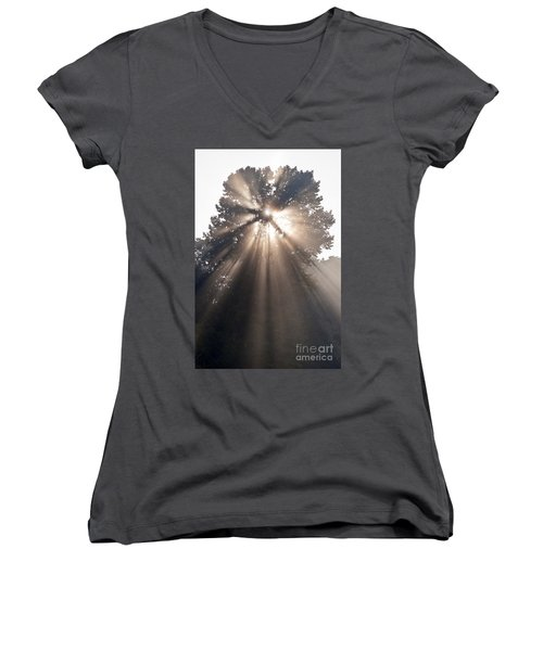 Crepuscular Rays Coming Through Tree In Fog At Sunrise Women's V-Neck T-Shirt