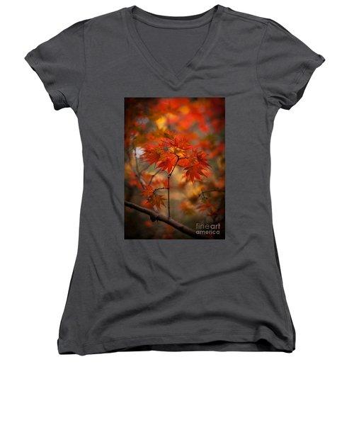 Crown Of Fire Women's V-Neck T-Shirt (Junior Cut) by Mike Reid