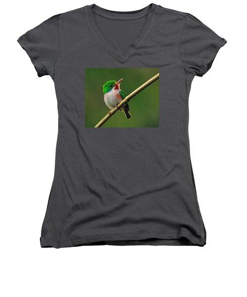 Cuban Tody Women's V-Neck T-Shirt (Junior Cut) by Tony Beck