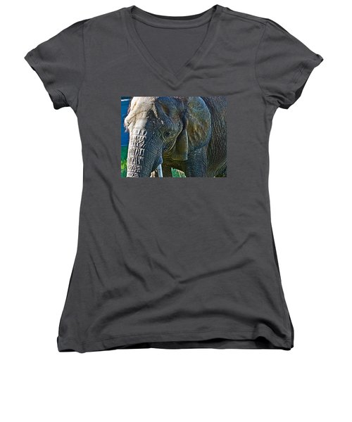 Cuddles In Search Women's V-Neck T-Shirt