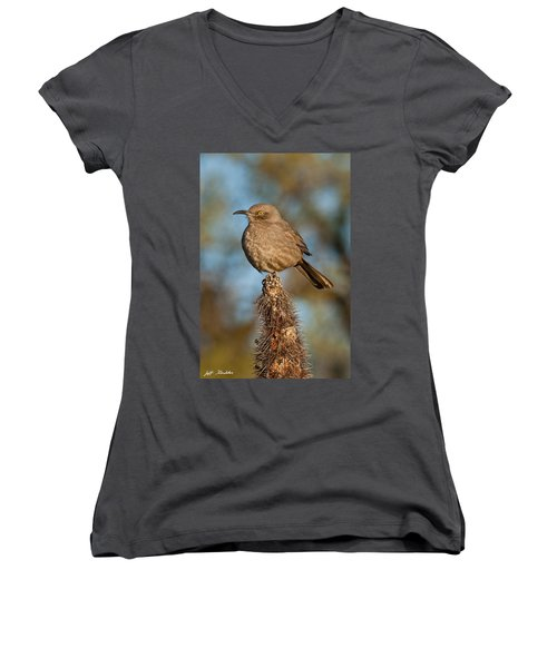 Curve-billed Thrasher On A Cactus Women's V-Neck (Athletic Fit)
