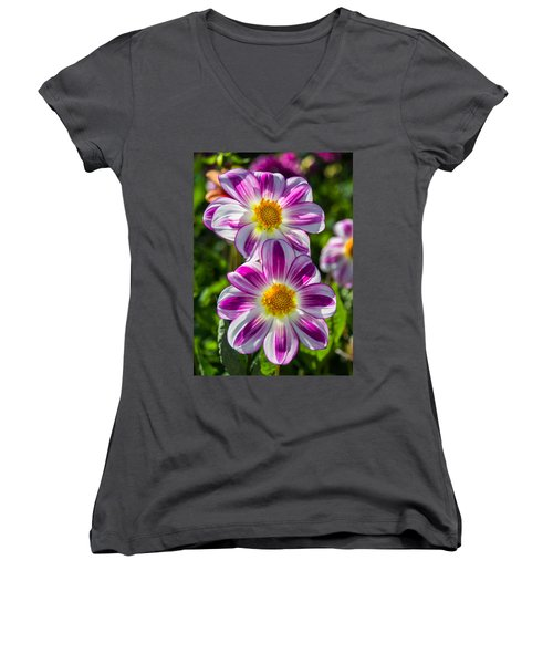 Dahlia 3 Women's V-Neck T-Shirt