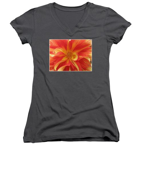 Dahlia Unfurling In Yellow And Red Women's V-Neck T-Shirt (Junior Cut) by Dora Sofia Caputo Photographic Art and Design