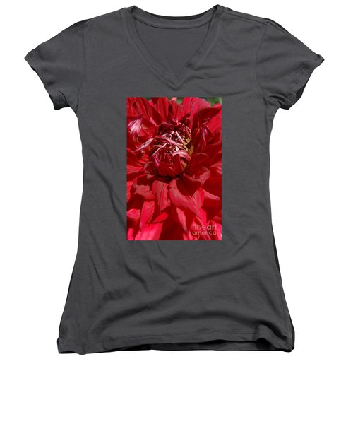 Women's V-Neck T-Shirt (Junior Cut) featuring the photograph Dahlia Viiii by Christiane Hellner-OBrien