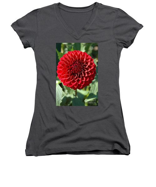 Women's V-Neck T-Shirt (Junior Cut) featuring the photograph Dahlia Xii by Christiane Hellner-OBrien