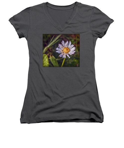 Women's V-Neck T-Shirt (Junior Cut) featuring the photograph Daisy by Hanny Heim
