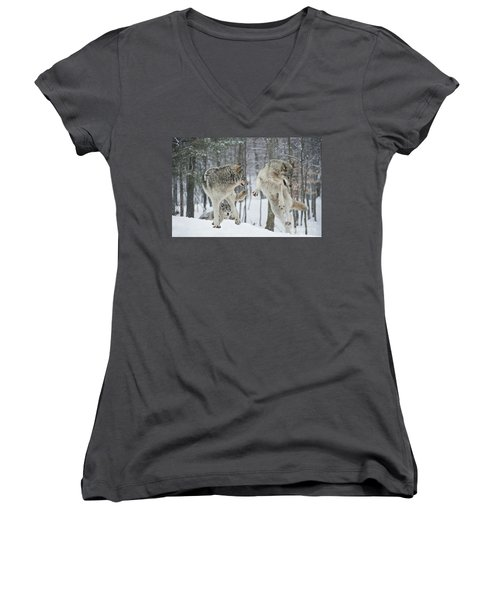 Women's V-Neck T-Shirt (Junior Cut) featuring the photograph Dances With Wolves by Wolves Only
