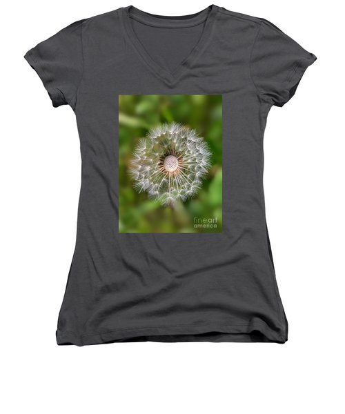 Dandelion Women's V-Neck T-Shirt (Junior Cut) by Carsten Reisinger
