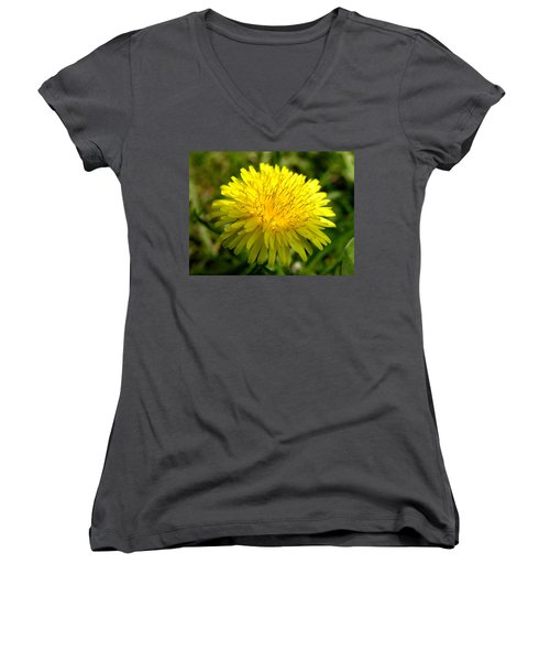 Women's V-Neck T-Shirt (Junior Cut) featuring the digital art Dandelion by Ron Harpham