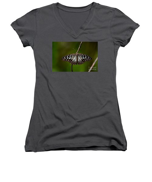 Dark Glassy Tiger Butterfly On Branch Women's V-Neck T-Shirt (Junior Cut) by Imran Ahmed