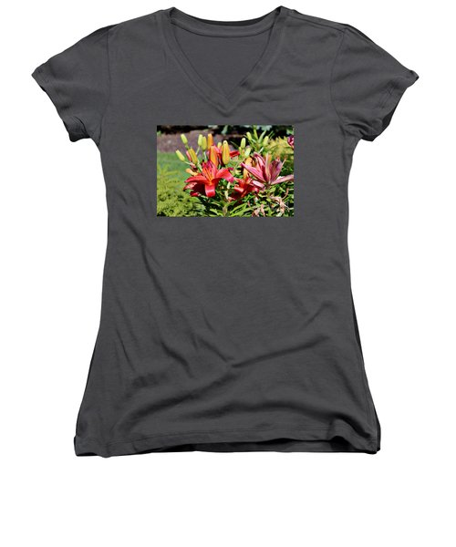 Day Lillies In The Garden Women's V-Neck T-Shirt