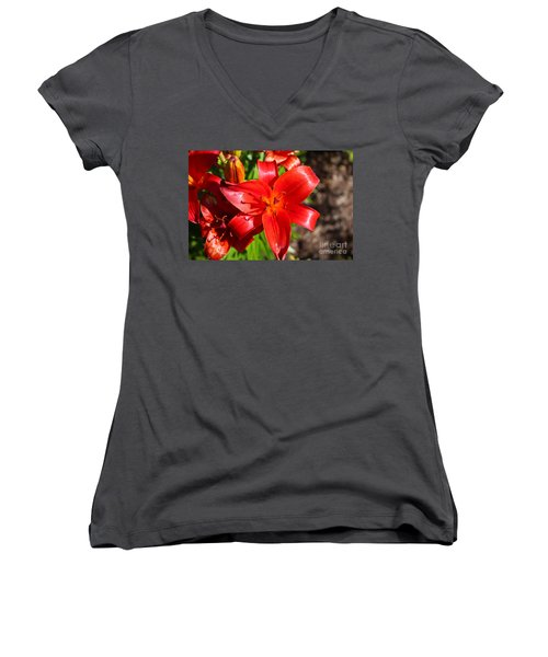 Day Lilly Women's V-Neck T-Shirt