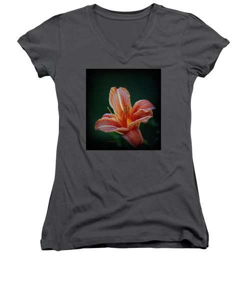 Day Lily Rapture Women's V-Neck T-Shirt