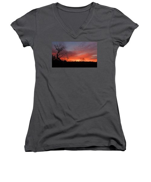 Dead Tree Sunrise Women's V-Neck (Athletic Fit)