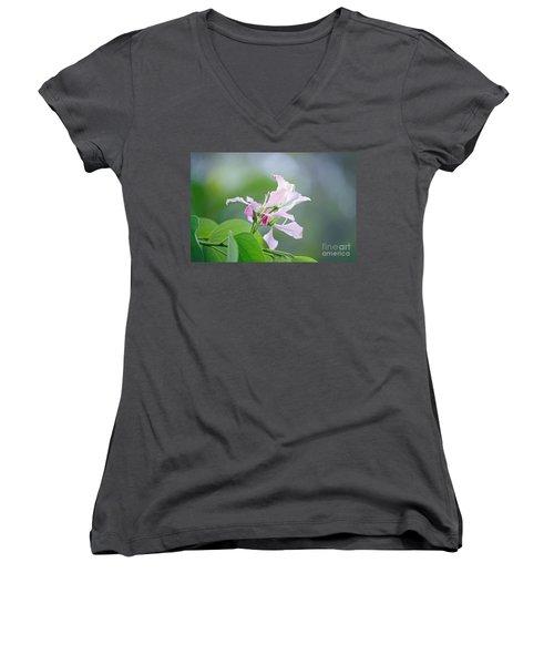 Delicate Delight Women's V-Neck T-Shirt