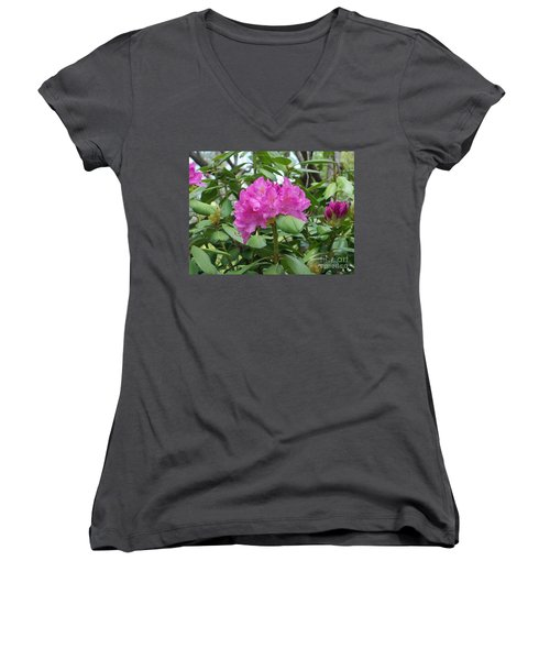 Women's V-Neck T-Shirt (Junior Cut) featuring the photograph Delicate Beauty by Roberta Byram