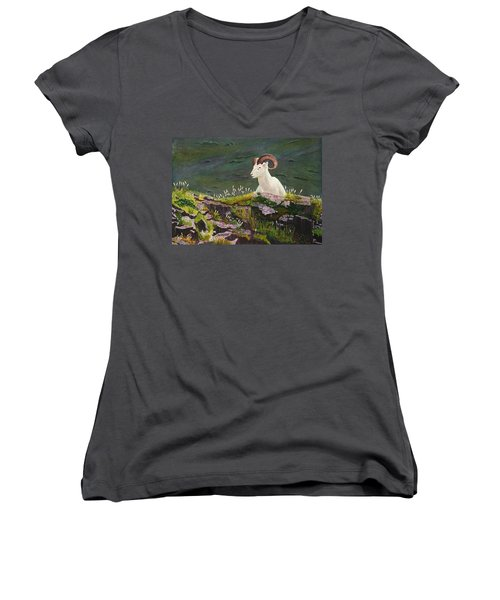 Denali Dall Sheep Women's V-Neck T-Shirt (Junior Cut) by Mike Robles
