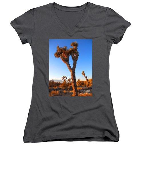 Desert Poet Women's V-Neck T-Shirt (Junior Cut) by Gem S Visionary