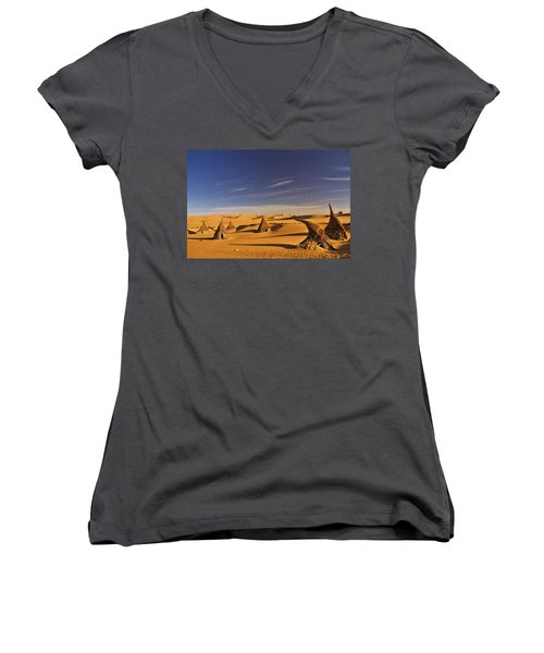 Desert Village Women's V-Neck T-Shirt