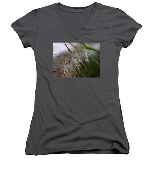 Women's V-Neck T-Shirt (Junior Cut) featuring the photograph Dew On Fountain Grass by Joe Schofield
