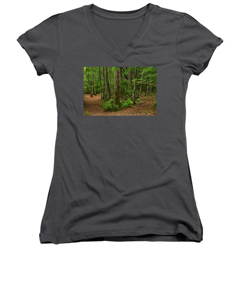Diverted Paths Women's V-Neck (Athletic Fit)