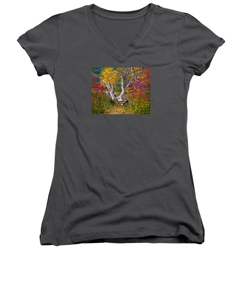 Women's V-Neck T-Shirt (Junior Cut) featuring the digital art Dog Tree by Mary Almond