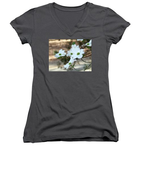 Dogwood 2 Women's V-Neck T-Shirt (Junior Cut) by Andrea Anderegg