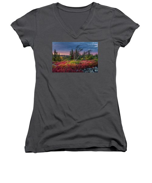 Dolly Sods Windswept Sunset Women's V-Neck T-Shirt (Junior Cut) by Mary Almond