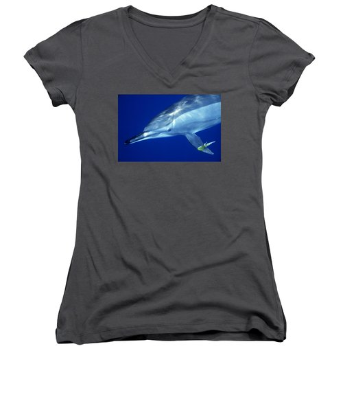 Dolphin Women's V-Neck (Athletic Fit)
