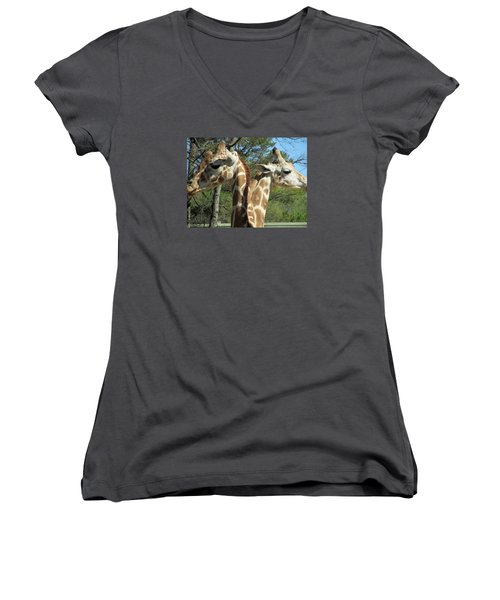 Giraffes With A Twist Women's V-Neck (Athletic Fit)