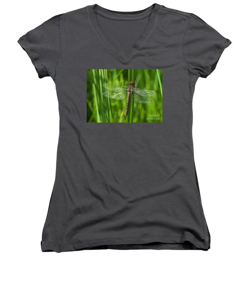 Dragonfly On Grass Women's V-Neck (Athletic Fit)