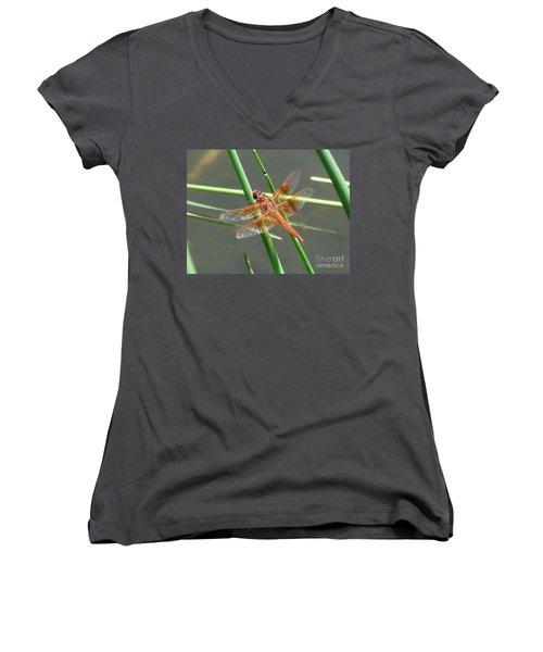 Dragonfly Orange Women's V-Neck